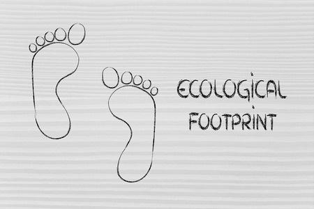 Bildung Ökologie mit dem ökologischen Fußabdruch