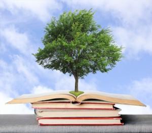 Bildung Ökologie die ökologische Bildung